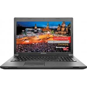Ноутбук Lenovo Ideapad B590A (59425837)