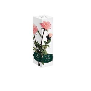 Светильник Старт Роза 3 Pink