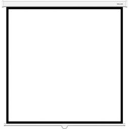 Экран Deluxe DLS-M180XW Белый