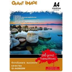 Фотобумага Giant Image GI-A426020W A4