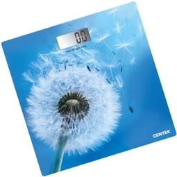 Напольные весы Centek CT-2421 Весенний Цветок