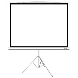Экран Deluxe DLS-T153X116W
