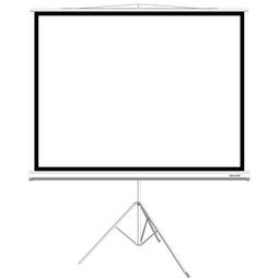 Экран Deluxe DLS-T203X154W