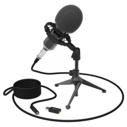 Микрофон Ritmix RDM-160 Черный
