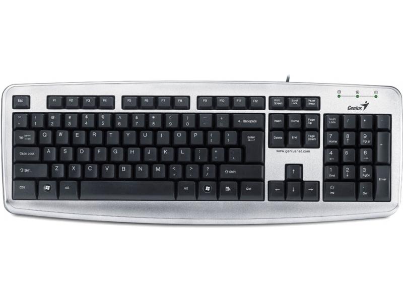 Клавиатура Genius KB-110X silver
