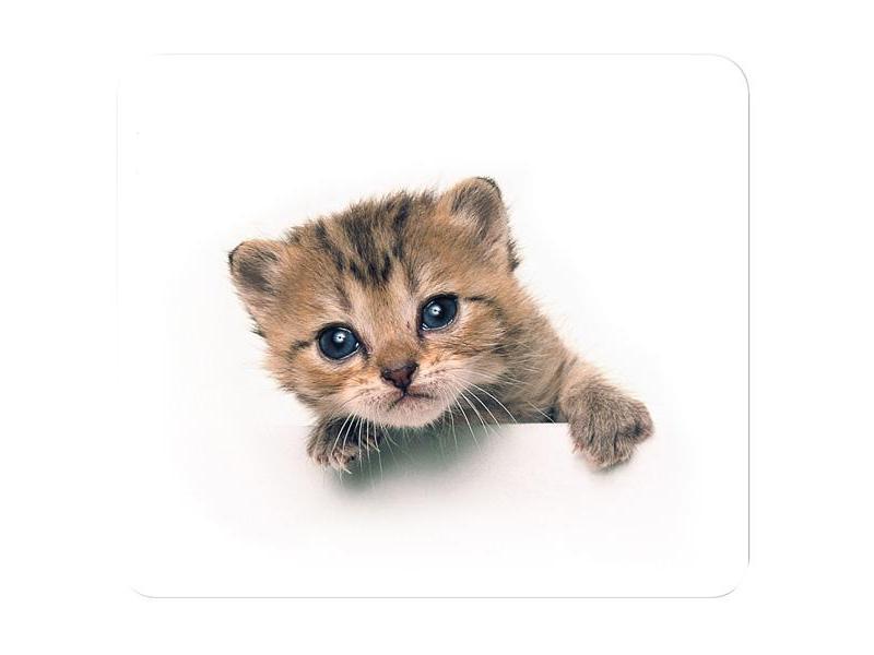 Коврик для мыши Tucano Cat